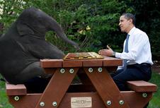 Medium obama chess vs checkers copy