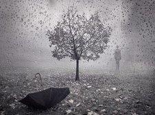 Medium rsz autumn rain