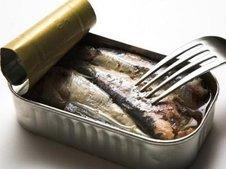 Medium rsz sardines0