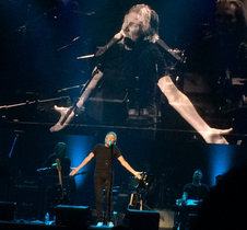 Medium roger waters dar