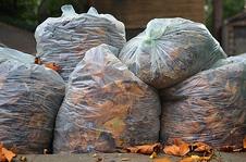 Medium leaf bags