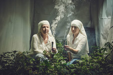 Medium nuns grow marjuana sisters of the valley shaughn crawford john dubois 13