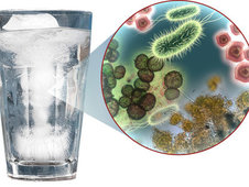 Medium rsz ice water with germs